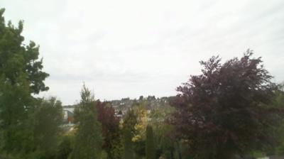 Webcam Lower Dangan: Newcastle