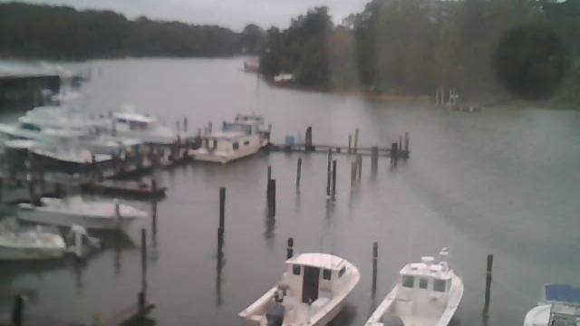 Webcam Smith Point Marina › West: United States