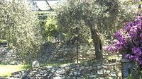 Rapallo - Actual