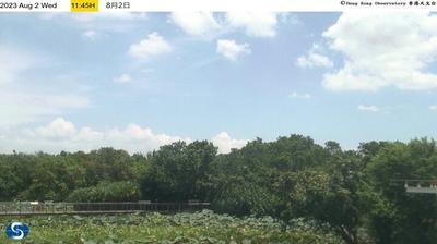 Tageslicht webcam ansicht von 天水圍: Wetland Park
