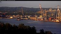 Love: Larvik havn