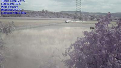 Thumbnail of Edertal webcam at 1:13, Jun 15