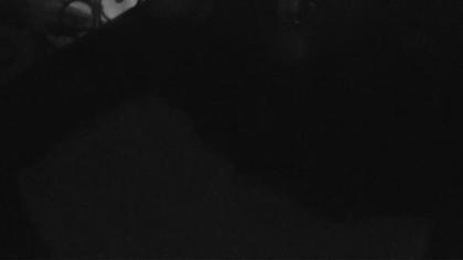 Engelberg: Livespotting - Live aus den Schweizer Alpen in