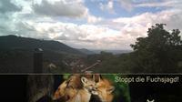 Simmersbach: WetterCam - Dagtid