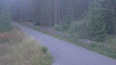 Strachan › Sud: Cairn O'Mount Rd