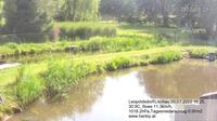 Leopoldsdorf: Fischteich