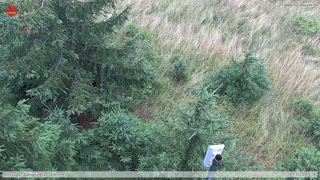 Webkamera Donovaly rekreačná oblasť: Záhradište