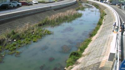 Vignette de Kyomachi webcam à 2:05, janv. 16