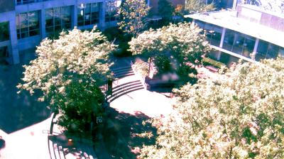 Thumbnail of Air quality webcam at 6:06, May 15