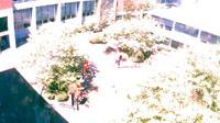 Seattle: Pacific University - Martin Square - El día