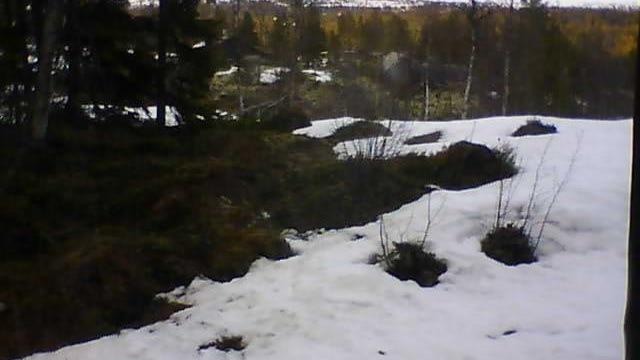 Webkamera Luråsgrendi: Tindefjell hyttegrend, Luredalen