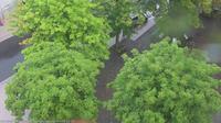 Seelbach: Ortenau Blick auf den Klosterplatz: Blick auf den Klosterplatz von - Ortenau - Recent