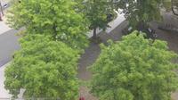 Seelbach: Ortenau Blick auf den Klosterplatz: Blick auf den Klosterplatz von - Ortenau - Dia