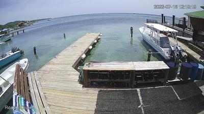 Vista de cámara web de luz diurna desde Sandy Bay: Roatan Divers