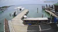 Sandy Bay: Roatan Divers - Dia