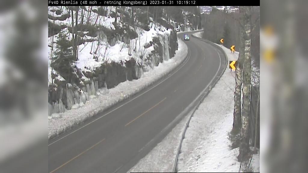 Webkamera Seierstad: F40 Rienlia