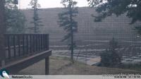 Loon Lake: BC - Recent