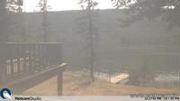 Loon Lake: BC - Overdag