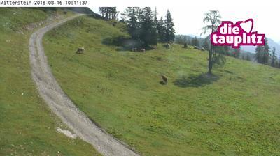 Webkamera Tauplitz: Schneiderkogel 1 Blickrichtung Berghof