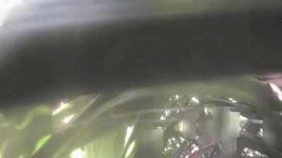 Daylight webcam view from ふかい › North West:  石垣市 米原: 米原海岸ライブカメラ