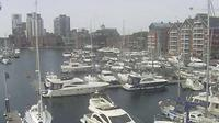Ipswich › West: Neptune Marina - Day time