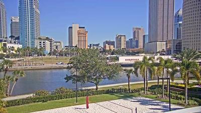 Tampa Daglicht Webcam Image