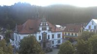 Schonau im Schwarzwald › South-West: Schönau im Schwarzwald - Actuales
